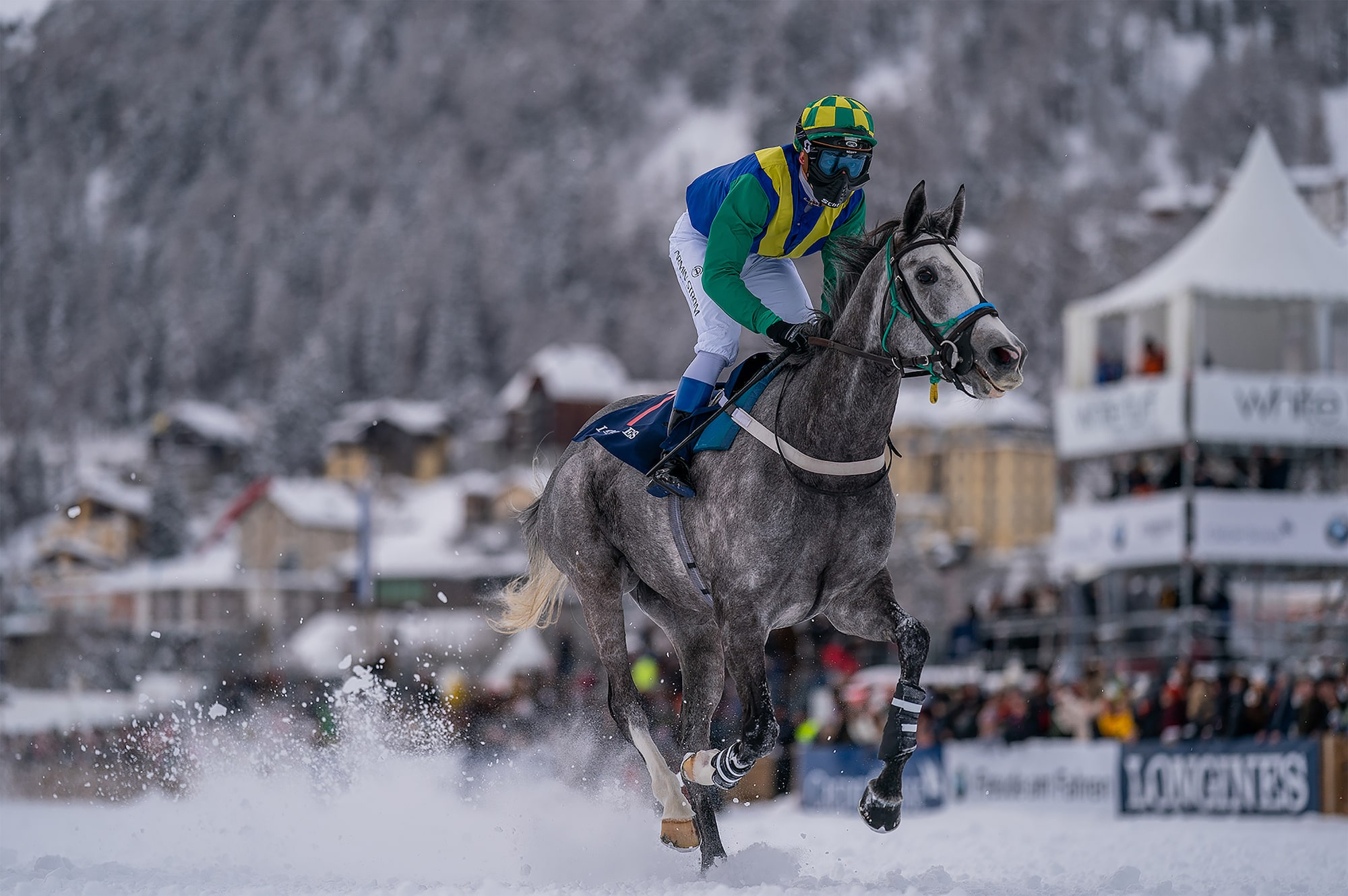 bob martin sony alpha 9 jockey on a grey horse running at speed through snow