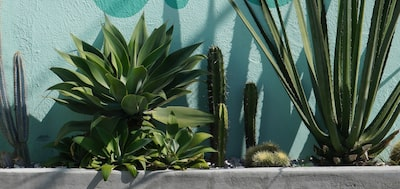 Image of Uncompromising image quality