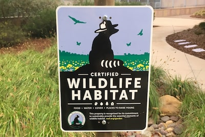 Image of Sony San Diego Aachievesd Wildlife Habitat Certification in San Diego