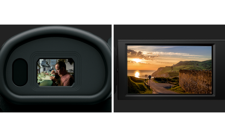 oled viewfinder lcd