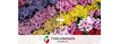 TRILUMINOS colour logo