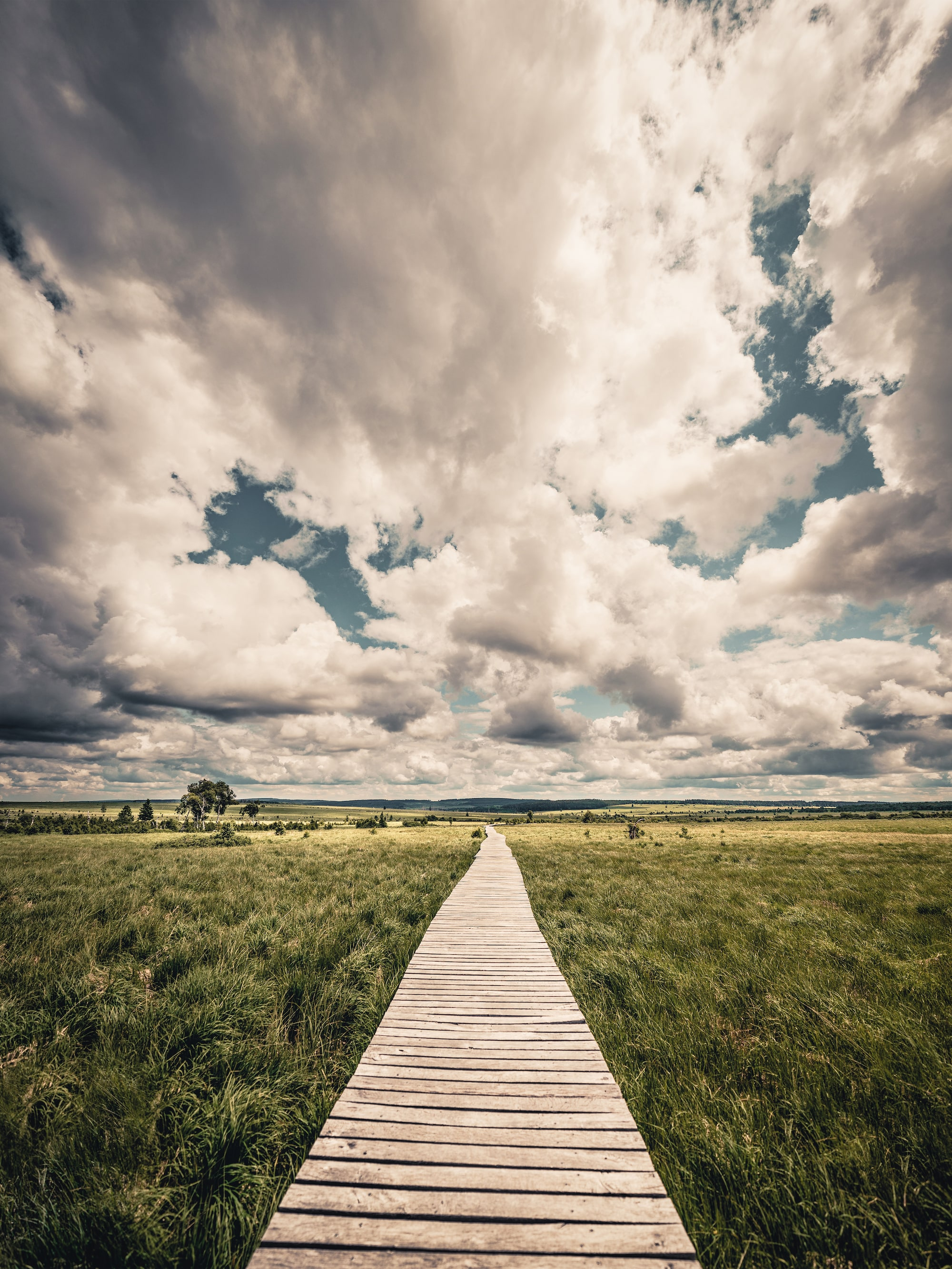 michael schaake sony alpha 7RM4 a wooden path leads off across a field with dramatic skies above
