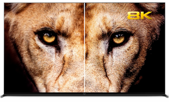 Lion's head comparison showing 4K and 8K resolution.