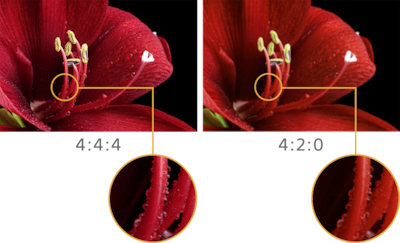 Comparison image of 4:4:4 and 4:2:0